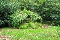 Un jardin enchanté à découvrir au Royaume-Uni