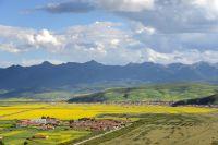 Fromage dur et alcool sans gueule de bois, bienvenu au Tibet