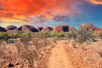 L'Australie frappée par la canicule