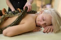 Massage serpents