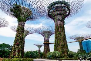 Visite guid�e dans le jardin du futur � singapour