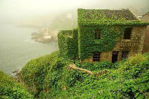 Pueblo abandonado en China reconquistado por la naturaleza