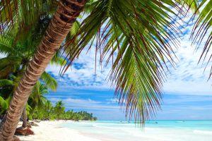 Le bon plan du jourune semaine à Punta Cana tout inclus pour 938 euros