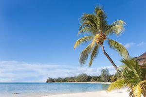 Bon plan du jour une semaine magique à l'île Maurice pour 1085 euros vol+hôtel