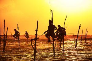 Weshalb wir sofort nach Sri Lanka reisen wollen