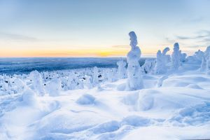 Top things to do in Lapland reasons to go
