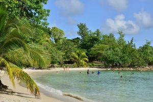 Martinica el paraíso tropical francés