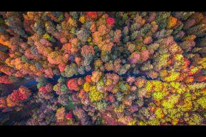 mejores vistas otoño desde el cielo drone