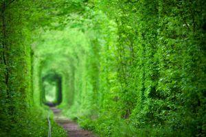 VIDEO Der romantischste Tunnel der Welt