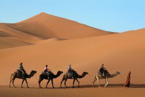 La solution pour trouver un billet d'avion pas cher pour le Maroc