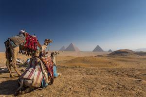 Verlorene Stadt in Ägypten wiederentdeckt