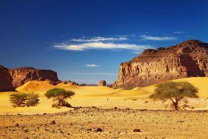 top 5 déserts d'Afrique