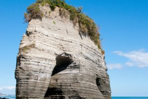 New Zealand's Elephant Rock loses its trunk