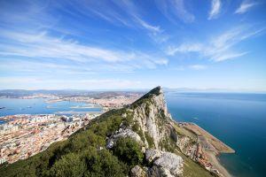 Voyage à Gibraltar pour voir les seuls singes d'Europe