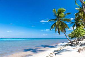 un empresario premia con un viaje a las maldivas a sus 100 empleados