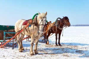 Quebec winter carnival biggest in the world reasons to go