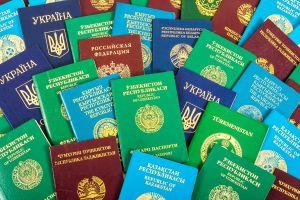 Que signifie la couleur du passeport ?