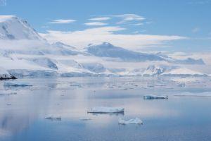 Il mulinello di ghiaccio che uccide la fauna artica