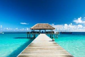 Un direttore ha regalato un viaggio alle Maldive ai suoi dipendenti