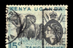 65 years ago today Elizabeth became Queen while sleeping in a Kenyan lodge