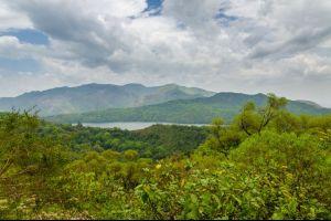 Tayap, das Öko-Vorbild von Kamerun