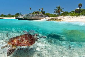 Mexico is best destination for march with kids family