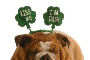 Spécial Saint Patrick  30 faits que vous ne saviez probablement pas sur l'Irlande