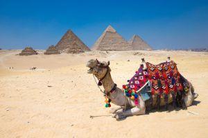 Il costo del visto per l'Egitto raddoppia e sempre meno turisti inglesi scelgono la destinazione