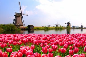 Wohin im Reisemonat April?