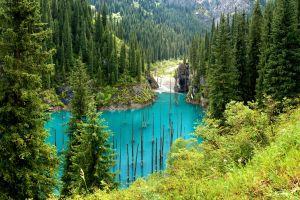 Versunkener Wald in Kasachstan