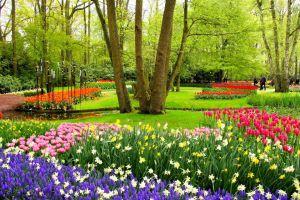 Frühlingsgefühle in Holland Keukenhof hat wieder eröffnet