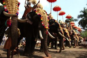 May best festivals worth travelling for