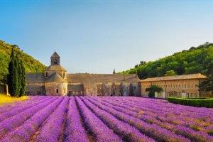 top 30 pays pour parler français en voyage