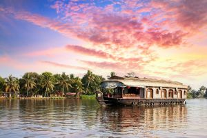 kerala india jungle backwaters boat trip of life time