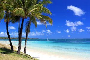 Ile Maurice la nature en danger à cause du tourisme