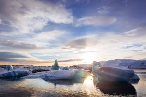 incredible cruises in the Antarctic and arctic