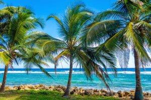 playas paises suramerica