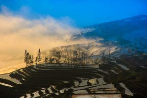 Chine  une nouvelle découverte historique