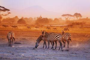 Kenia - Die Wiege der Menschheit