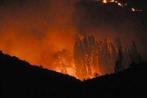 Waldbrände in Italien könnten Urlaubspläne beeinträchtigen