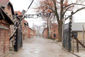 Museum Auschwitz plant internationale Wanderausstellung