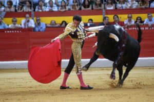 Balearic Islands victory for anti-bullfighting advocates