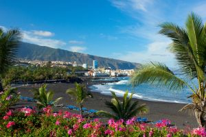 Global warming to blame after toxic algae forces beaches to close in the Canary Islands