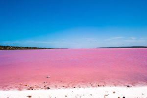 5 Seen, die uns an Erdbeer-Milkshake erinnern
