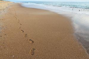 strandgebühr an nordsee ist rechtswiedrig