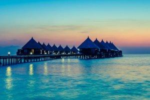 maldive ristorante subacqueo natura squali alta cucina