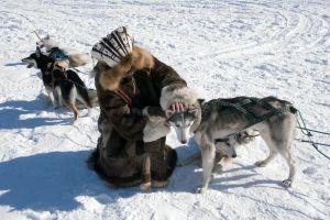 Inuit-Ein Überlebenskünstler
