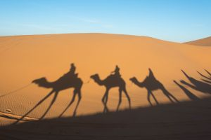 Les merveilles du Maroc en image