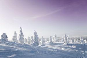20 merveilles naturelles en Finlande cet hiver