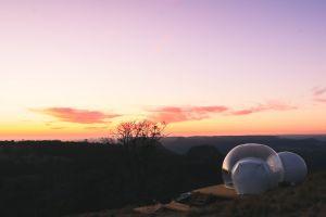 Insolite : être dans sa bulle au milieu des kangourous